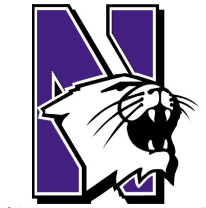 Northwestern Wildcats Gifts